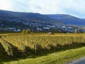 Buergstadt-RIMG0028